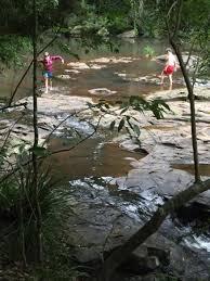 Gardeners Falls Maleny - amazing natural oasis just west of sunshine coast of qld