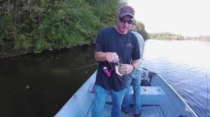 octoraro fishing at octoraro lake nothing but dinks but funny youtube