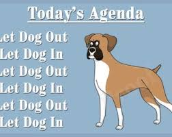 boxer dog sayings 216 best beautiful boxers images on pinterest boxers boxer dogs