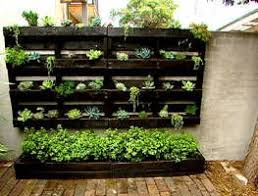 209 best wall garden images on pinterest balcony garden ideas