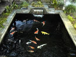 Backyard Pond Landscaping Ideas Triyae Com U003d Koi Fish Backyard Pond Various Design Inspiration
