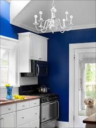 Painted Kitchen Cabinet Ideas Kitchen Painting Oak Cabinets Kitchen Craft Cabinets Kitchen