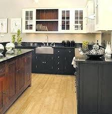 Dark And Light Kitchen Cabinets Kitchen Cabinets Light Upper Dark Lower U2013 Colorviewfinder Co