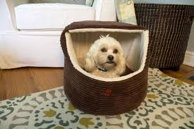Igloo Dog Houses Iconic Pet Luxury Snugglez Igloo Pet Bed U0026 Reviews Wayfair