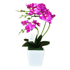Fake Orchids Aliexpress Com Buy Hight Quality Artificial Orchid Flower Pot