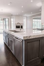 Gray Cabinets In Kitchen by Best 25 Dark Kitchen Cabinets Ideas On Pinterest Dark Cabinets