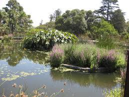 weekdays outing to royal botanic gardens melbourne