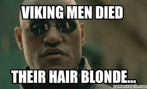 Viking Meme - meme 44