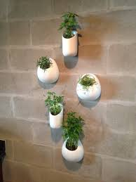 planters that hang on the wall modern hanging planters planters porcelain and air plants