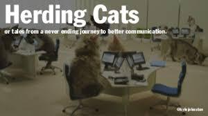 Herding Cats Meme - image gallery herding cats
