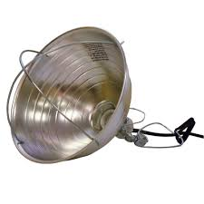 hdx 10 1 2 in brooder clamp light hd 303pdq the home depot