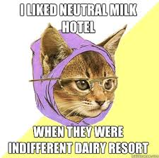 Meme Hotel - i liked neutral milk hotel cat meme cat planet cat planet