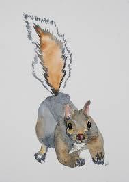 squirrel bridge rosemary u0027s blog