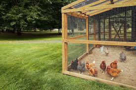4 chicken runs and coops built from recycled materials