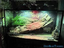 aquarium image gallery deepbluethemes com