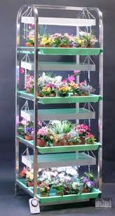 african violet grow light for the collector sun lighter stand sl48p saintpaulia african