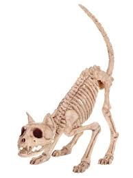 Halloween Decorations Skeleton Bones by 72 Best Halloween Props And Decoration Images On Pinterest