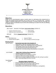 Sample Resume Executive Summary by Server Resume Example Professional Administrative Assistant