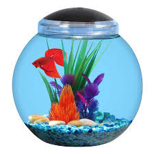 Fish Bowl Decorations Aqua Culture 1 Gallon Globe Bowl With Led Light 7 25