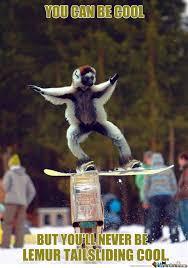 Snowboarding Memes - m kay by mazedo meme center