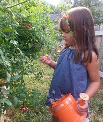 family gardening blog u2014 complete family nutrition