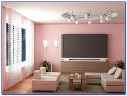 ceiling color combination lighting winsome wall and ceiling color combinations paint colors
