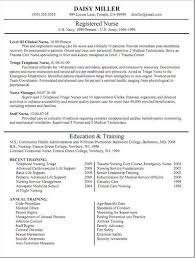 nursing resumes that stand out 461 best job resume samples images on pinterest job resume