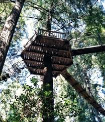 tree house bridge platform international treehouse association