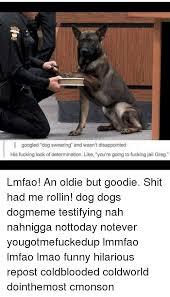 Funny Swearing Memes - 25 best memes about google dogs lmao fucking dank memes