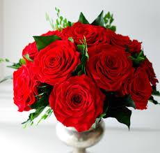 Forever Roses Preserved Roses U2013 Floralessence