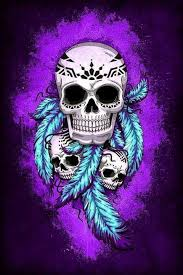 indian skulls and feathers skulls feathers
