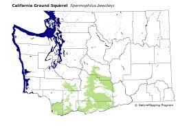 Yakima Washington Map by Distribution Map California Ground Squirrel Spermophilus Beecheyi