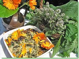 thym serpolet cuisine cuisine de flore cuisine aux fleurs recettes délices jardin flore