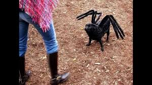 more mutant giant spider dog costume for sale youtube