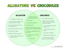 Alligators In Georgia Map Difference Between Crocodile And Alligator Google Search Kids
