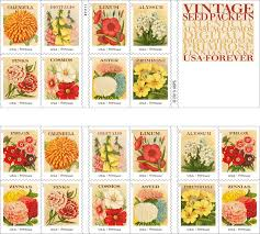 flower seed packets new flower sts