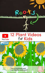 best 25 science videos ideas on pinterest science videos for