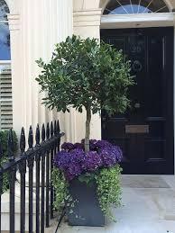 planters amazing front door planters plants for front door