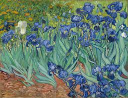 irises getty museum irises