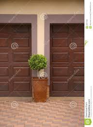 pot plant inbetween two garage doors royalty free stock images