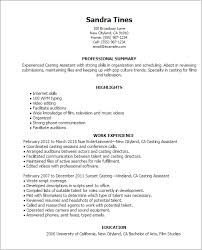 Resume Examples For Physical Therapist by Media U0026 Entertainment Resume Templates To Impress Any Employer