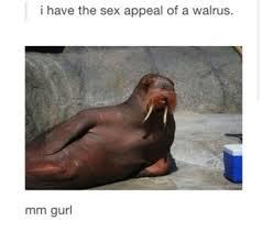 Sex Appeal Meme - mhmmm meme by dcnight memedroid