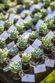 best 25 plant wedding favors best 25 wedding hashtags inspiration ideas on wedding