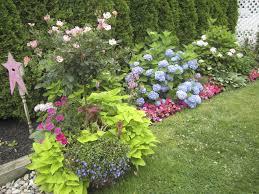Garden Shrubs Ideas Reduced Low Growing Flowering Shrubs Garden Evergreen Gardens New
