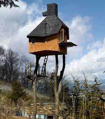 and creative tree houses