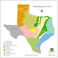 native texas landscaping plants considering native plants botany for design