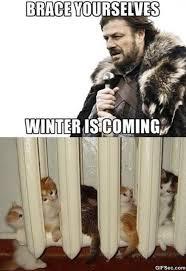 Winter Is Coming Meme - winter is coming meme viral viral videos