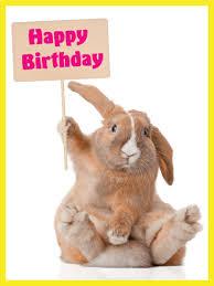 rabbit birthday adorable bunny happy birthday card birthday greeting cards by