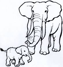 70 big images animal coloring pages