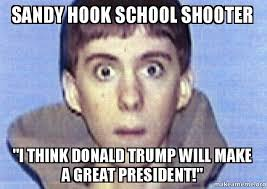Hook Meme - sandy hook school shooter i think donald trump will make a great